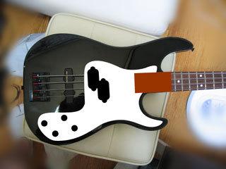 bass100.jpg